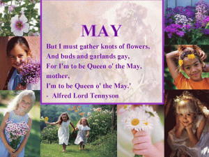 May Flower Gathering Quote free digital signage content